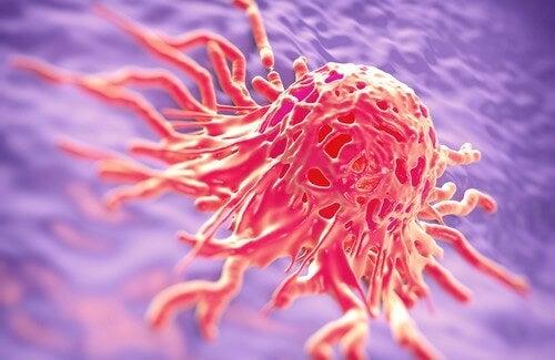 癌と闘う為に使われる薬草