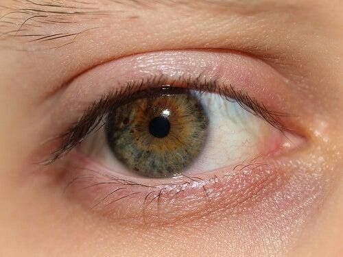目に効く自然療法