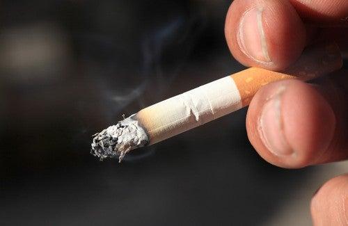 禁煙に役立つ植物
