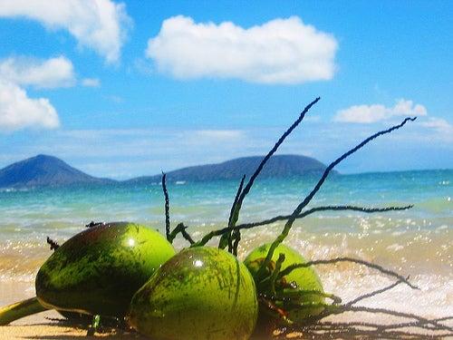 ココナッツとビーチ