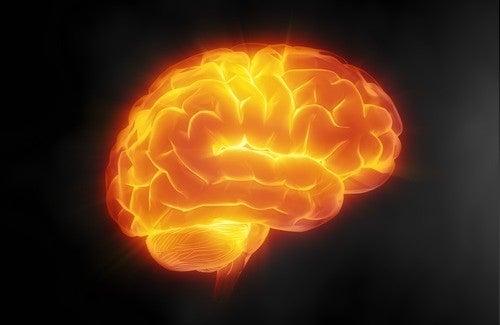 脳をいたわる7つの秘訣