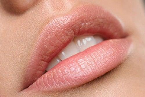 唇の乾燥に効く自然療法