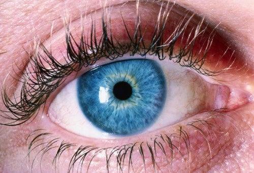 視力を守る5つのポイント
