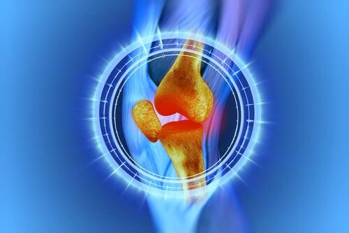 ひざの痛み:その原因と治療法