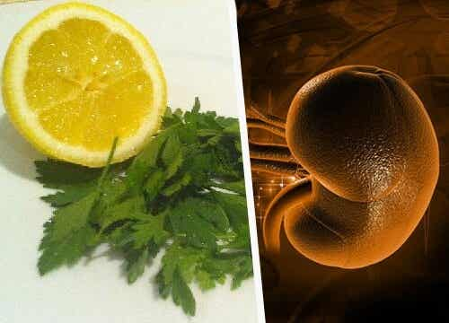 パセリとレモンを使った腎臓のデトックス法