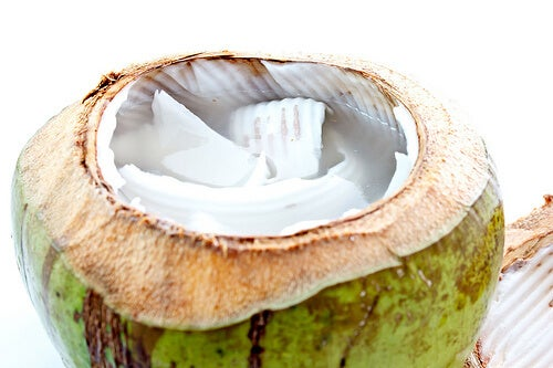 2-ココナッツの実