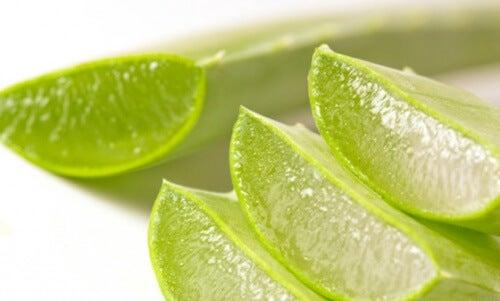 家庭でできる痔の予防と自然療法
