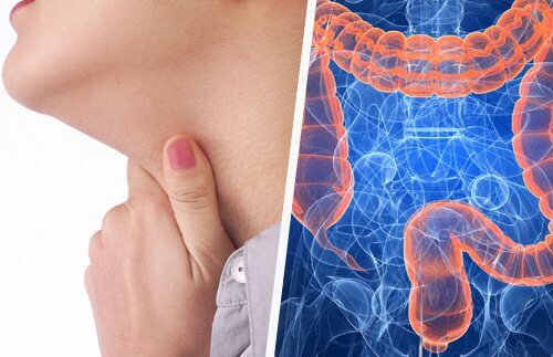 喉の問題と腸の関係