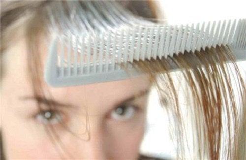 抜け毛を防ぐ3つのハーブ