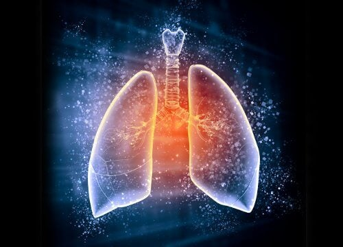 肺デトックス
