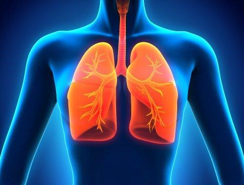 肺デトックスとは