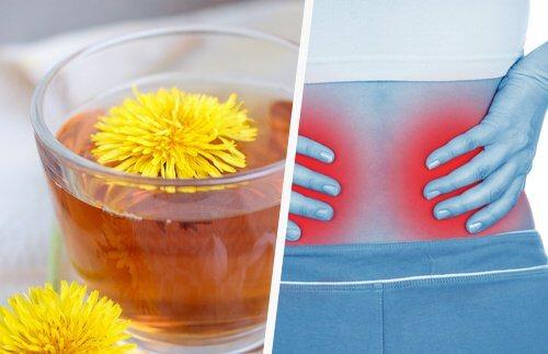 手軽に腎臓デトックス!5つの方法