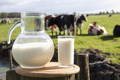 低脂肪乳.ミルク