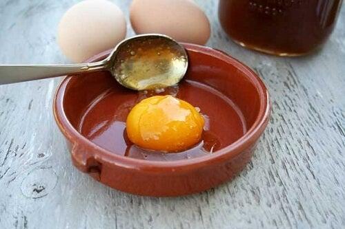 卵の健康効果