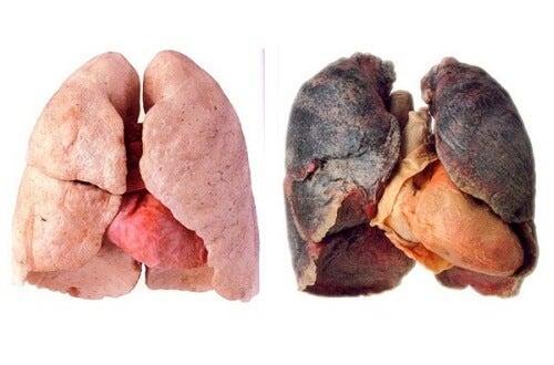 肺をきれいにする方法