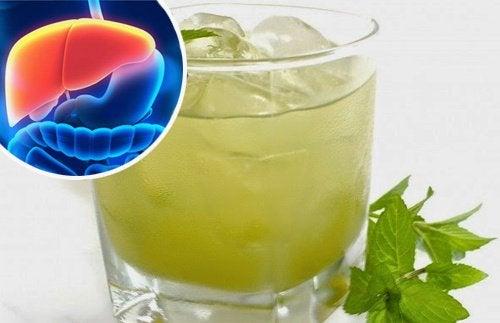 肝臓を毒性の強い金属から守る14の自然療法