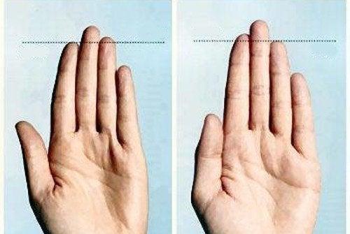 手の指が教えてくれる8つのこと