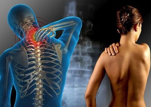 ハーブで自然に治す線維筋痛症