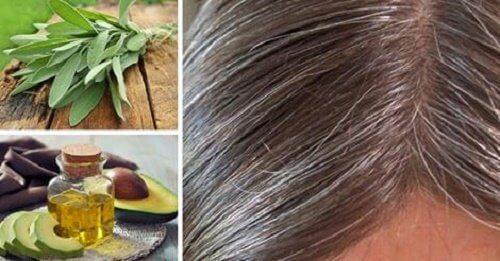 必読! 白髪の原因と自然療法