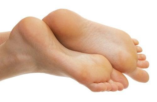 3-健康的な足