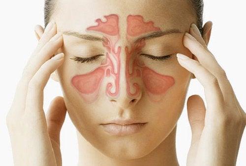 3-副鼻腔洞