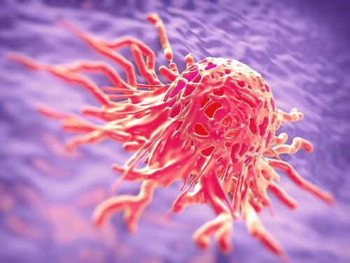 発がん性の可能性がある食べ物を/知ろう