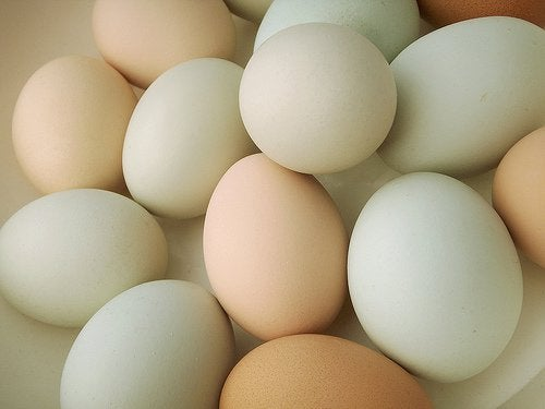 卵は週に何個食べてもいいか?