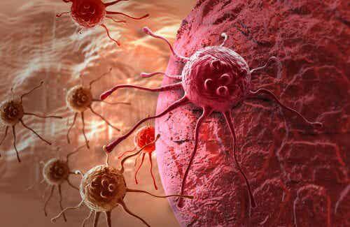 タンポポ茶によるガンの自然療法