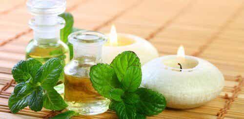 美容と健康に役立つ/ミントオイルの作り方