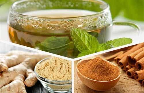 緑茶・生姜・シナモンで体力を回復しよう