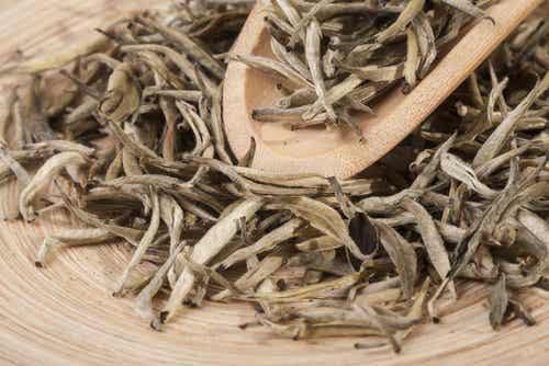 マグネシウムを豊富に含むお茶ベスト2