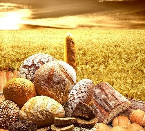 穀物とシリアル