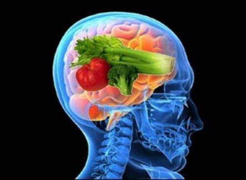 脳の健康を保つ食生活