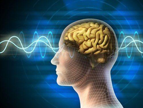 若々しく柔軟な脳を保つために/するべきこと10