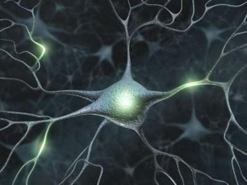 記憶力アップに役立つ10の方法