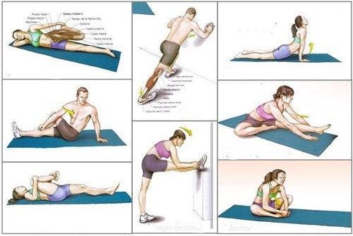 健康維持に役立つ!9つの効果的なストレッチ