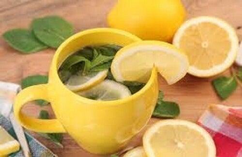 レモンピール茶