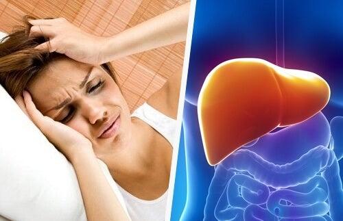 肝臓の不調からくる頭痛とは?ー頭痛と肝臓の関係