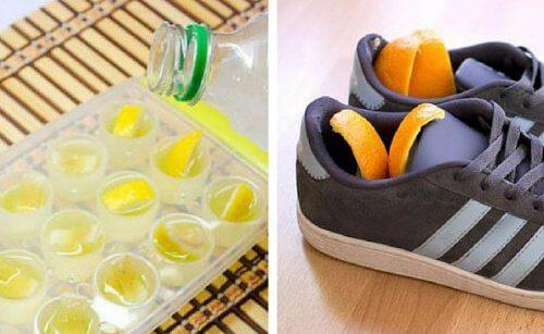 柑橘類の皮でできる裏技6つ