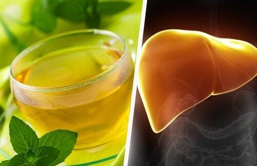 食物繊維と苦い野菜で肝臓を労わろう