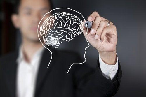 2-the-brain