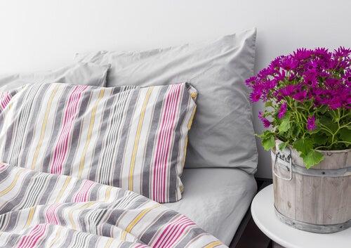 3-better-pillows