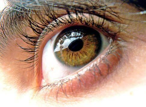 3-healthy-eyes
