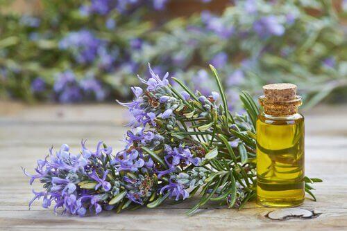 3-rosemary-oil