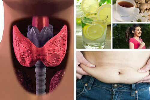 甲状腺機能低下症になった時の減量法