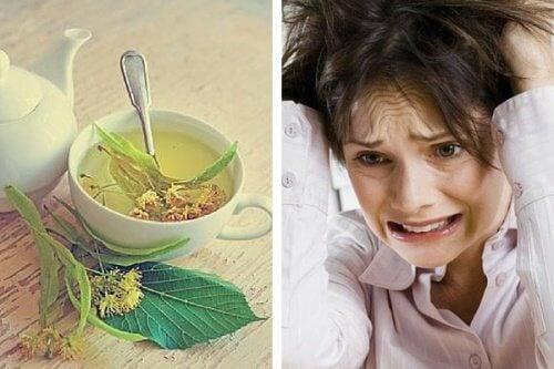 不安と神経過敏をしずめる/ハーブ茶TOP4