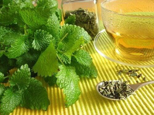2-mint-tea-2