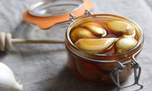 肝臓の健康を守る/ハチミツ&ニンニク療法