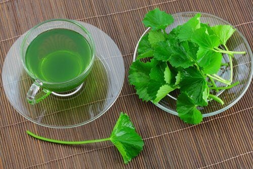 4-parsley-tea