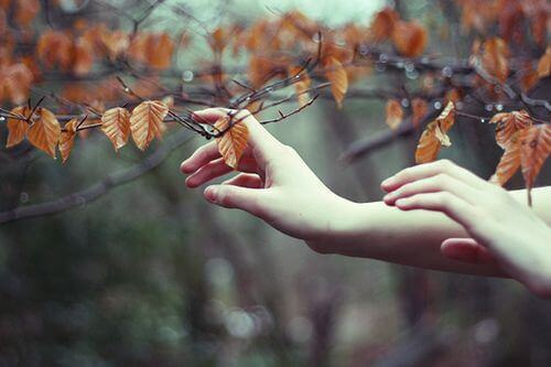 hands-touching-leaves